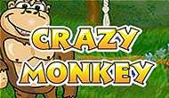 игровые автоматы Crazy Monkey играть